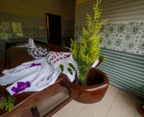 kerala ayurvedic treatment center