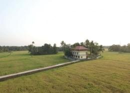 kerala ayurvedic centre